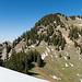 Rückblick: Der Abstieg vom Gross Aubrig Westgipfel führt steil über diesen bewaldeten Rücken.