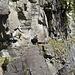 La straordinaria cengia obbligata che porta all'Alpe di Salosa