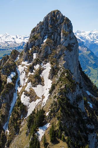 Kleiner Mythen vom Haggenspitz aus. Eigentlich sieht das ganze Gelände nicht besonders einladend aus. In Aufsicht wirken die Hänge steiler als sie sind. Zumindest mit Pickel lassen sich die Schneefelder bei Trittschnee sicher begehen.