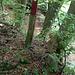 Der Pfosten markiert das obere Ende der Rippe, auf der der Grenzpfad verläuft.