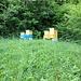 Bienenstöcke, kurz nach dem Einstieg am Waldrand.