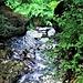 ... il fiume inizia a correre nella gola fino al grande salto.