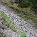 Die beiden parallelen Geröllrinnen Les Moussets. Die erste wird beim P.1491m gequert so wie man auf dem Foto sieht.
