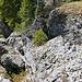 Tiefe Kalkspalten unterhalb des Gipfels ders Gummesels / Tête de l'Ane.