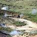 Geothermalgebiet bei Hveragerdi