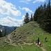 Abstieg vom Fockenstein in Richtung Neuhüttenalm