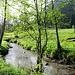 Schöne Bachlandschaft