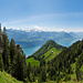 Hier geht es hinab. Vor erreichen der Alphütte muss man im lichten Wald nach rechts halten.