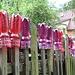 Nicht nur Tassen - böhmische Zäune sind auch für Plasteflaschen geeignet - oder umgekehrt.