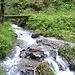 Sentiero Alpe Mürecc - Alpe di Zalto.