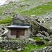 Schwarzhals Ziegen belagern die gut geschützte Hütte