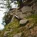 Holzleitern, -stege und -treppen erleichtern den Aufstieg nach Motta Giova und Pianca Bella, sind aber z.T. morsch und nur mit Vorsicht zu benutzen