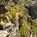 Blick zurück auf den ausgesetzten Schaf- und Ziegenpfad über das mittlere Band