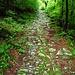 Der alte Saumweg auf die Alpen von Bisbino