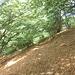 Sentiero segreto Boglia