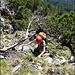 tpyisches Aufstiegsgelände im unteren und mittleren Teil des Haggenspitz Nordgrat