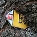 Noch mehr vom Baum verschluckt als [http://www.hikr.org/gallery/photo204649.html dieser] oder [http://www.hikr.org/gallery/photo109472.html dieser] Wegweiser. <br />Ich weiss nicht was auf diesem Wegweiser effektiv stehen würde. Sieht nicht nach Breitenalp aus, vielleicht Bleien? (Der Wegweiser befindet sich in der Nähe von P. 1048 auf dem Weg von Starkenbach nach Vorderselun)