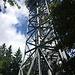 Hagenturm: Noch sind wir auf dem sicheren Boden ..