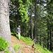 Ein kurzer Abstecher vom Felsenweg und der Ausblick auf den Feldsee
