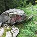 Dieser Stein markiert den Einstieg des Jägersteigs. Nebst der deutlichen Wegspur lassen sich zu Beginn noch einige verblasste, rote Markierungen finden.