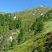 Alpe Buriale