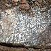 <b>Actinolite.<br />Sulla via del ritorno ho il piacere di osservare e fotografare un bel campione di actinolite, nella forma di cristalli lamellari lunghi 1-2 cm. </b>