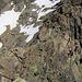 Rückblick auf den Aufstiegsweg zum Jegihorn