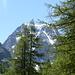 der Mont Collon