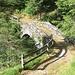 Ponte sul riale Nedro