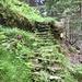scala lungo il sentiero