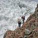 Noch kann man auf dem Fels am Gletscher vorbei