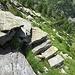 Un tratto gradinato del sentiero che scende verso l'Alpe Cramec