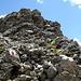 il brevissimo tratto di roccette in discesa lungo la cresta nord del Piz Clunas
