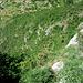 Das Ziel Biacesa rückt näher - (Mitte des Bildes)  die letzten Serpentinen des S.delle Laste sind sichtbar, sowie der Weg Nr. 470 (ein bischen mehr links oberhalb des Grabens)