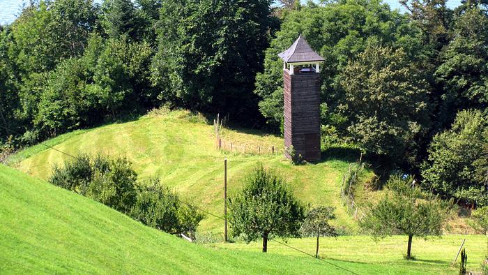 Ein Bild, das Gras, draußen, Feld, grün enthält.  Automatisch generierte Beschreibung
