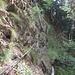 Section un peu délicate sur la rive gauche du Marchgrabe. Le sentier est effondré et un ou deux ancrages utiles du cable ont lâché.
