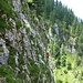 Obwohl es sehr grasig aussieht: es dominiert Fels und die Graspolster stören (fast) nicht!