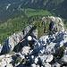 ...bis man auf dem Gipfelgrat anlangt...