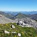 Farbtupfer auf dem Gipfelplateau