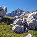 Die großartigste Felsbastion im Allgäu - der Hochvogel.