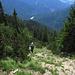 Schrottrig-grasige Rinne im Abstieg vom Sattel über dem Kalbelekar zum südseitigen Weg am Altenberggrat