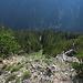 Wiederaufstieg durch die steile Schotterrinne vom Weg auf den Grat. Dieses Bild gibt in keinster Weise die wirkliche Steilheit wieder:-( / risalita dal sentiero sul lato sud in cresta. Questa foto non riesce affatto dimostrare la vera ripidezza:-(