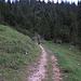 Abstieg ins Pöllattal / discesa alla valle della Pöllat