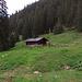 Auf geht`s...1 Stunde und 100 Hm auf der Forststraße zurück zur Jägerhütte / Andiamoci...un`ora e 100 m di dislivello in ritorno alla Jägerhütte