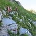 ... im allmählich wieder von Fels durchsetzten Gelände ...