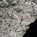 Sentier alpin de la face sud du Schesaplana
