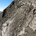 Face sud du Schesaplana : pentes de schistes vers 2600m, pied sûr de rigueur bis
