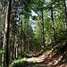Man folgt einem Weg, der oberhalb einer Wiese parallel zum Stecklebach talauswärts führt.