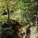 Die spektakulärste Passage des Urgrabens befindet sich hinter dem Gullerbühl: auf einer Strecke von ca. 150 Metern ist der Fels an vielen Stellen abgearbeitet worden, um dem Urgraben Platz zu schaffen.