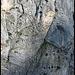 Suchbild mit Geiselsteinsüdwand und zwei Kletterern